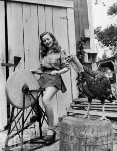 vintage-thanksgiving-pinups-7